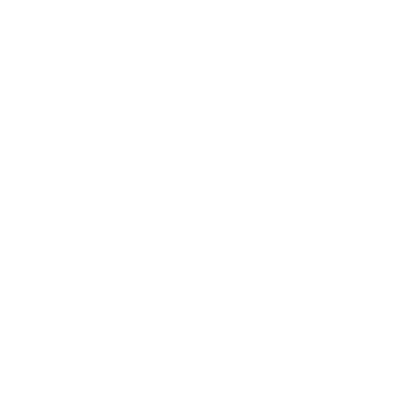 Dunlop Group Business Park Logo